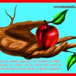 La Collección de Risale-i Nur,Said Nursi,Palabras,Cartas,Rayos,Risale-i Nur,Palabras Pequenas,La Vigesimo Tercera Palabra,La Vigesima Carta,Destello Veinticinco Luz Para Los Enfermos,Sobre Ramadan,Naturaleza: ¿Causa o Efecto?,Sinceridad,Los Frutos de la Fe,La Décima Palabra,Una Súplica,La Palabra 33,La Luz de La Fe,laluzdelafe.org